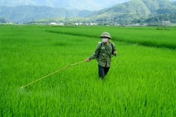 Các phương pháp phát hiện dư lượng thuốc trừ sâu trên nông sản