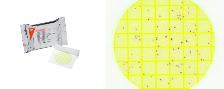 Đĩa petrifilm Listeria 3M Code 6447 6448